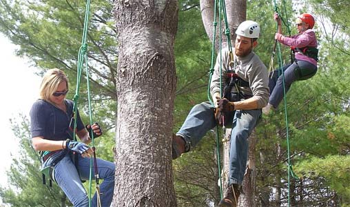 Learn Tree Climbing | New England Tree Climbing Association LLC