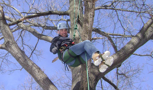 New England Tree Climbing Association LLC|Saddle Hunters, Tree